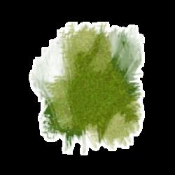 grass_0